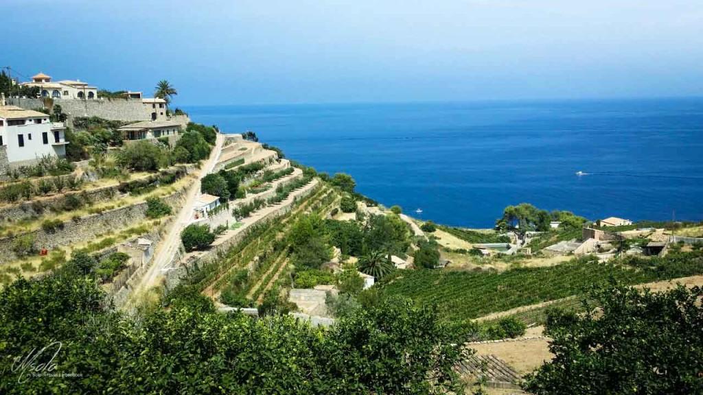 Mallorca 西班牙ibiza遊